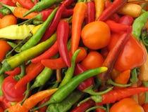 Chilien pepprar den fulla ramen för paprika Arkivfoto