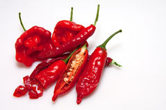 chilien pepprar red Royaltyfria Foton