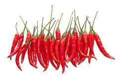 chilien pepprar red Royaltyfria Foton