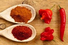 Chilien pudrar och chilis Arkivbilder