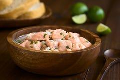 Chilien Salmon Ceviche Images libres de droits