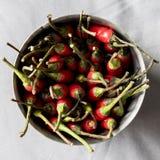 Chilies в металлической чашке стоковые изображения rf