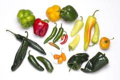 Chilies разнообразия, пряных и покрашенного, различных размеров Стоковые Фотографии RF