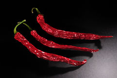 chilies Royaltyfri Foto