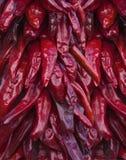 chilies Стоковое Фото