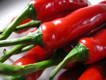 Chilies Royalty Free Stock Photos
