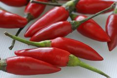 Free Chilies Stock Photography - 89042