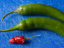 Chilies with blue background Royalty Free Stock Photos