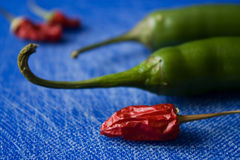 Chilies with blue background Stock Images