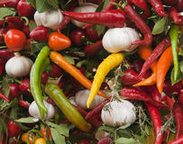 Chilies and garlic  Royalty Free Stock Photos