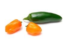 chilies habanero jalapeno Zdjęcie Royalty Free