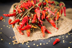 Chilies Stock Images