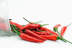 Chilies Series 2 Royalty Free Stock Image