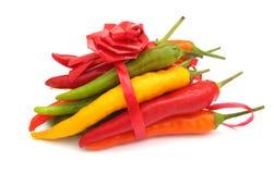 Chilies som binds i en bow Arkivfoton
