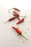 chilies suszyli Obrazy Stock