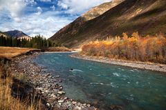 Chilik river in Kazakhstan Royalty Free Stock Photography