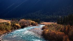 Chilik river in Tyan-Shan mountains Royalty Free Stock Image