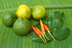 Chilikaffir och citronlimefrukt på gröna banansidor. Royaltyfria Bilder