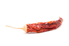 Chilipeppar Arkivbild