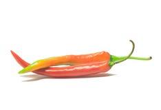 Chilipeppar/chilipeppar som isoleras på en vit bakgrund Arkivfoton