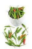 Chilipeppar för bästa sida i kopp Fotografering för Bildbyråer