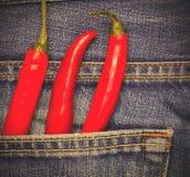 Chilipeppar i ett jeansfack Royaltyfria Foton