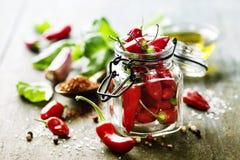 Chilipeppar med örter och kryddor royaltyfri bild