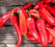 Chilipeppar på en tabell Royaltyfri Bild
