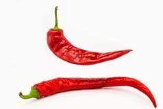 Chilipeppar på vit bakgrund Arkivfoto