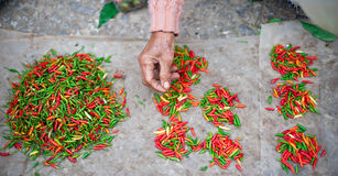 Chilipeppar på lokal marknad Royaltyfri Foto