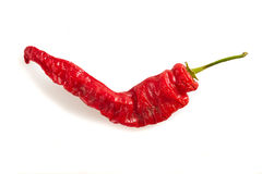 Chilipepper Stock Photo