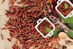 Chilipulver och torkade peppar på wood bakgrund Royaltyfri Fotografi