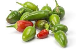 Chilis на белой предпосылке стоковая фотография