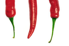 Chilis Royalty Free Stock Photography