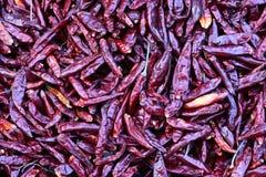 chilis Arkivbild
