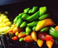 Chilis Стоковое Фото