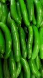 Chilis Стоковые Фотографии RF