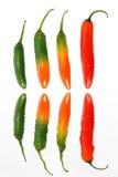 Chilis Imagens de Stock Royalty Free