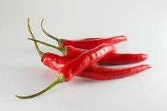 Chilis d'un rouge ardent image libre de droits