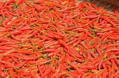 Chilis Royalty Free Stock Photo