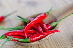 Chilis Royalty Free Stock Images
