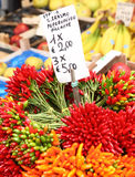 Chilis in the Rialto Market Royalty Free Stock Photo