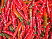 Chilis rojos Imagenes de archivo