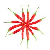Chilis rosso Fotografia Stock