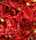 Chilis rouge sur le fond noir Photos stock
