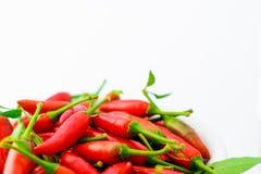 Chilis rouges fraîchement sélectionnés dans une cuvette sur le fond blanc Photo libre de droits