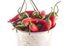 Chilis y jalapenos, en una poder de aluminio Foto de archivo libre de regalías