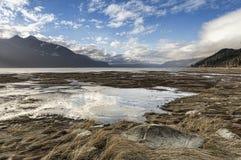 Chilkat Estuary Reflections Royalty Free Stock Photo