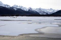 Chilkat-Fluss-Eis Lizenzfreie Stockbilder