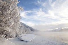 Chilkat-Fluss-Nebel Stockbild